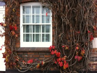 Henley-on-Themes in tardo autunno