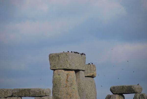 Inghilterra Stonehenge