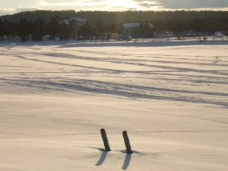 Finland, Inari – two sticks, 2006