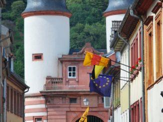 Germany, Heidelberg – monkey, 2011