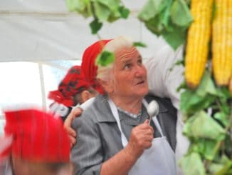 Hungary, Keszthely – corn, 2010