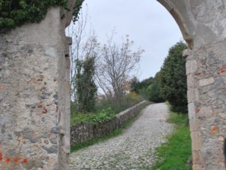 Italy, Final Borgo – river and flowers, Dec.2012