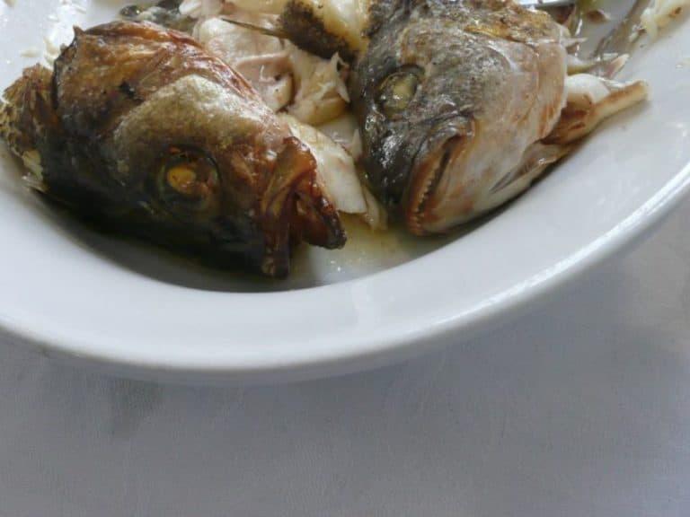 Meraviglioso pranzo a Manarola