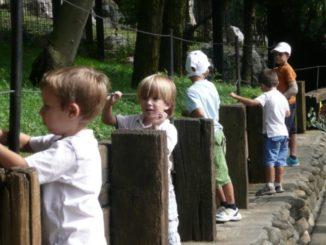 At Le Cornelle zoo