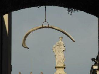 Italy, Verona – gate 2011