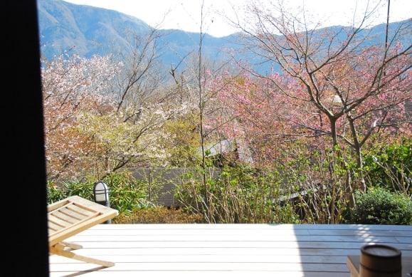 Wonderful ryokan in Hakone