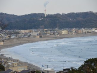 Japan, Kamakura – side dish, Dec.2012