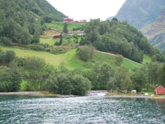 Norway, Sognefjord – hill, 2009