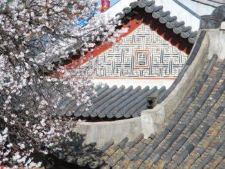 South Korea, Seoul – roofs, 2011