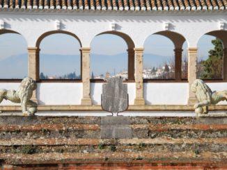 スペイン、グラナダ-馬 2010年12月