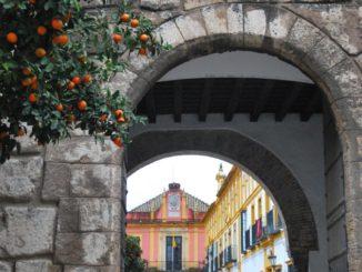 Spagna Andalucia Seviglia