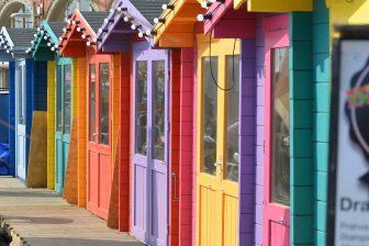 Brighton 2021