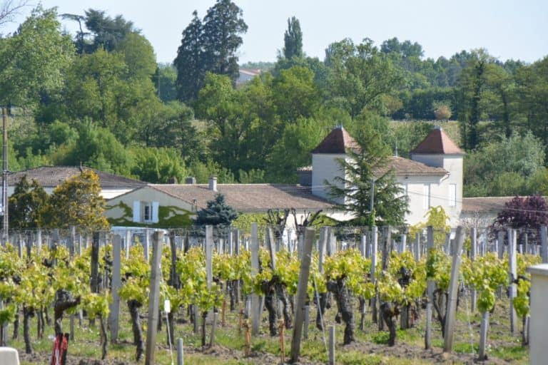 Tour to Saint-Emilion