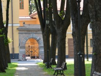 town – trees and benches, July 2016