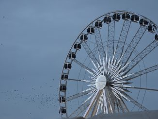 Poland, Gdansk - big wheel and birds, Aug.2016