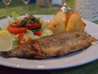 Poland, Gdansk - Red Inn restaurant, dessert, trout dish Aug.2016