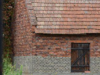 ポーランド、ワルシャワ郊外ーショパンの生家、庭の緑 2016年8月