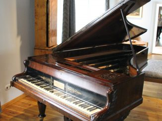 Poland, Warsaw suburbs  – Chopin's birth place, piano, Aug.2016