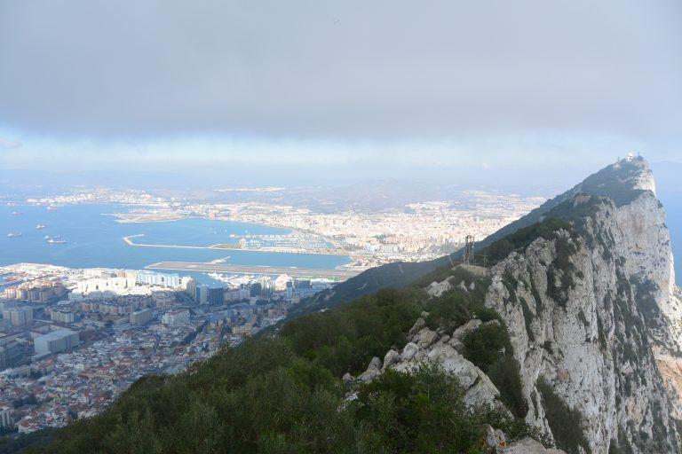 Le scimmie della rocca di Gibilterra