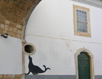 Faro – calamari, Feb.2017