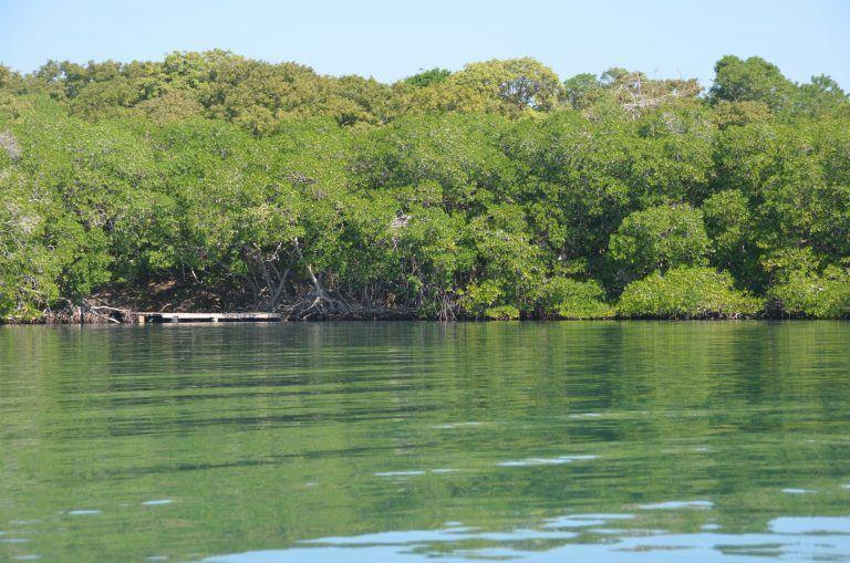 Isla Grande (47) (Isla Grande)