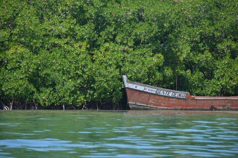 Isla Grande (48) (Isla Grande)
