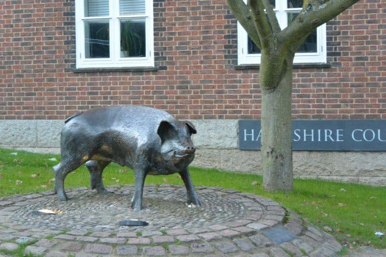 Winchester – The Hampshire Hog, Mar.2017 (Winchester)