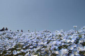 不思議な青の世界
