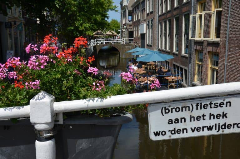 Delft – flowers and canal, June 2017 (Delft)