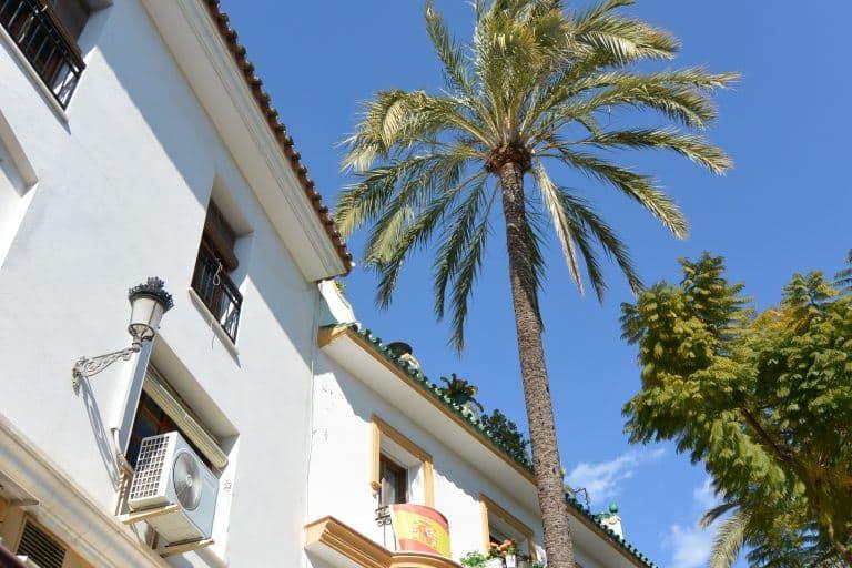 to Marbella
