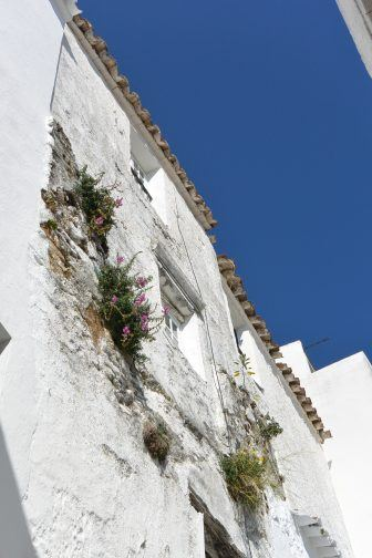 Casares – view of the village, Feb.2018