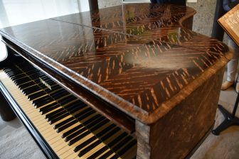Japan-Akita-Kakunodate-the Miraculous Piano-cherry bark