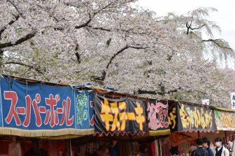 giappone-Akita-Kakunodate-bancarelle-ciliegi