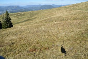 Carpathian Mountains (1)