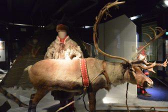 Norway-Oslo-The Norwegian Cultural History-exhibition-Sami people-reindeer