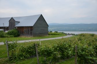 カナダ ケベック州 オルレアン島 ぶどう園 小屋