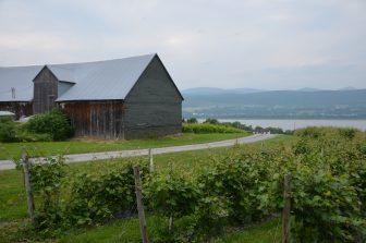 Canada-Quebec-Ile d'Orleans-vineyard-hut