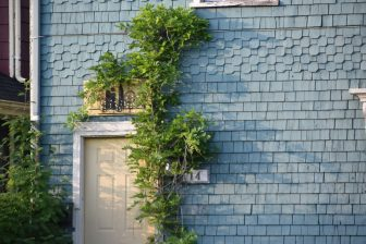 Canada-Prince Edward Island-Charlottetown-wooden house-ivy-door-number