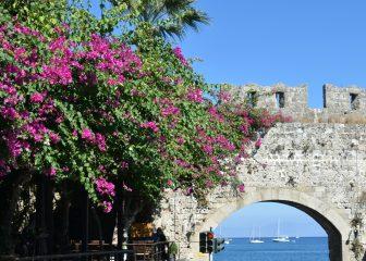 Greece-Rhodes-Rhodes Town-city gate-sea-sky-flowers