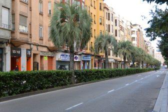 スペイン サラゴサ 通り ヤシの並木道 閑散