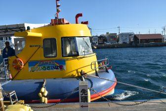 Japan-Kanagawa-Miura-Misaki Port-sightseeing boat-Nijiiro Sakana