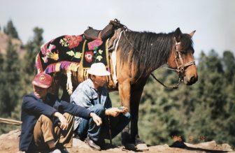 Cina-Tienchi-cavalli-per-turisti