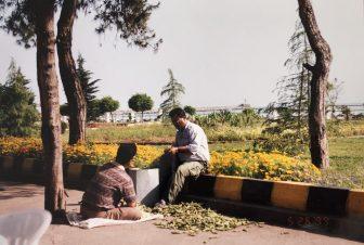 Anzali and vicinity (25)