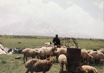having a close relationship with Shahsavan people in the northern Iran
