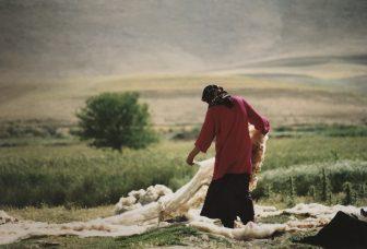 イラン ケルマンシャー 女性 羊毛