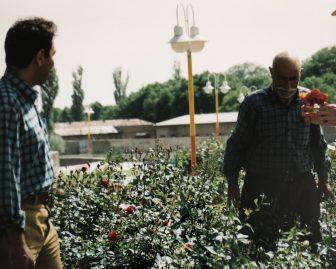 Iran-Maragheh-garden-gardener