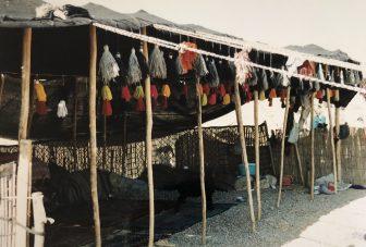 カシュカイ族のテントを訪問