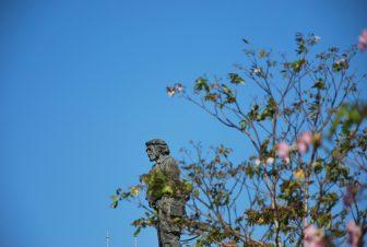 Che Guevara statue behind the plant in Santa Clara, Cuba