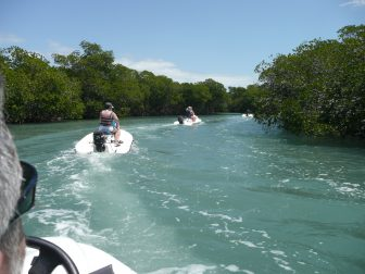 the personal watercrafts in a row going in the inland sea in Varadero