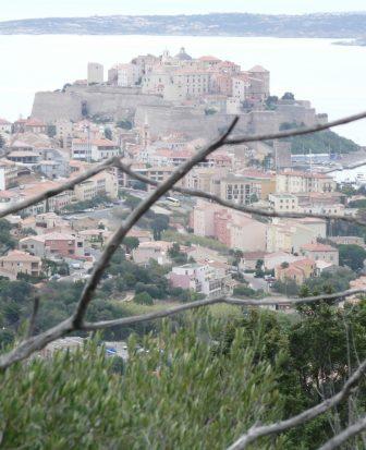 La cittadella di Calvi  in Corsica dalla collina